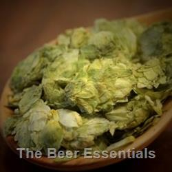 Amarillo®- Whole Hops