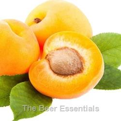Oregon Fruit Products Apricot Puree
