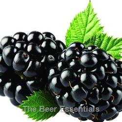 Oregon Fruit Products Blackberry Puree