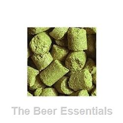 Northern Brewer - Pellet Hops